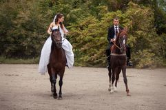 Wedding couple on horses Stock Photo