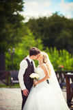 Wedding couple hugging Royalty Free Stock Photography