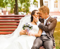 Wedding couple hugging and kissing in a private Stock Photography