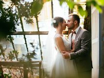 Wedding couple indoors is hugging each other. Beautiful model girl in white dress. Man in suit. Beauty bride with groom. stock images