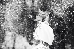 A wedding couple kisses tender in a snow flurry Stock Photos