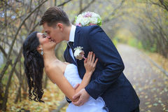 A wedding couple is kissing Royalty Free Stock Image