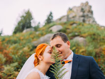 Wedding couple kissing in mountains against the sky and covers faces by fern. Cute romantic moment. Royalty Free Stock Photos