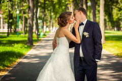 Wedding couple kissing in park Stock Photo