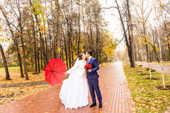 Wedding couple kissing in the rain Royalty Free Stock Photography