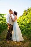 Wedding Couple Kissing in Vineyard. In a vineyard row at a winery the bride and groom share a passionate kiss with nobody around. Vertical color image with Royalty Free Stock Photos