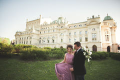 Wedding. Couple. Krakow. The bride in a pink dress and groom posing on background of theater Royalty Free Stock Images