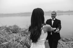 Wedding couple at the lake shore Royalty Free Stock Photos