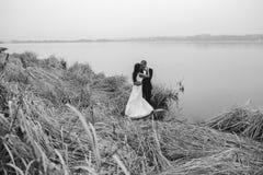 Wedding couple at the lake shore Royalty Free Stock Image