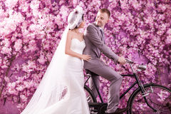 Wedding couple looking at each other against wall covered with pink flowers.  Stock Photos