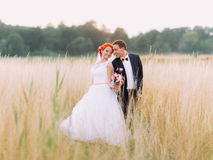 Wedding couple in love enjoy a moment of happiness on wheat field, enjoying marriage day together Stock Images