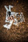 Wedding couple lying under a tree Stock Images