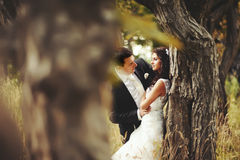 Wedding couple in magic forest. Outside portrait Royalty Free Stock Photo
