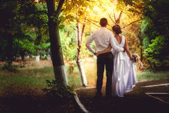 Wedding couple. Wedding of a married couple, bride and groom, together looking forward Stock Images