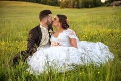Wedding couple on nature. Stock Images
