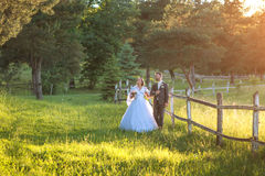 Wedding couple on nature. Stock Photos