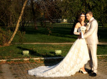 Wedding couple in nature Royalty Free Stock Photography