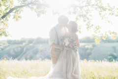 Wedding couple on  nature.  bride and groom hugging against the sun at wedding. Wedding couple on the nature. the bride and groom hugging against the sun at the Stock Photos