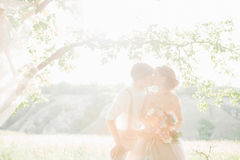 Wedding couple on  nature.  bride and groom hugging against the sun at wedding. Royalty Free Stock Photography