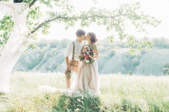 Wedding couple on nature. bride and groom hugging at wedding. Wedding couple on the nature. the bride and groom hugging at the wedding royalty free stock image