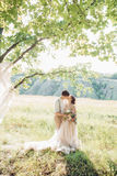 Wedding couple on  nature.  bride and groom hugging at  wedding. Stock Images