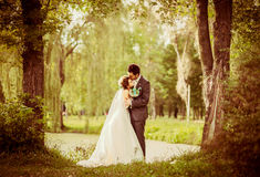 Wedding couple outdoor. With lake on background Stock Photos