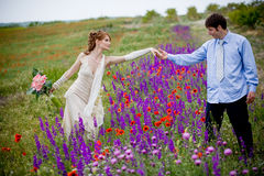 Wedding couple outdoors. Wedding couple in field of flowers royalty free stock photography