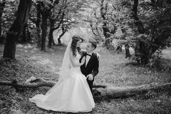 Wedding couple in the park Royalty Free Stock Image