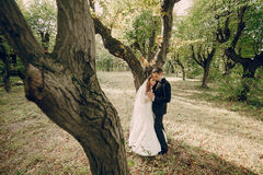 Wedding couple in the park Royalty Free Stock Photography