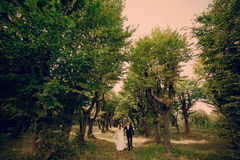 Wedding couple in the park Stock Photography