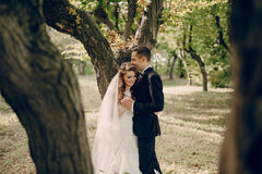 Wedding couple in the park Royalty Free Stock Images