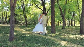 Wedding Couple In A Park stock video footage