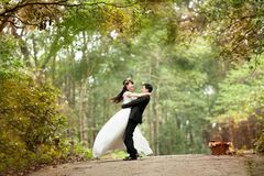 Wedding Couple Photo Royalty Free Stock Photography