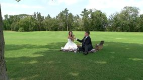Wedding couple on a picnic. stock video footage