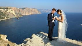 Wedding couple with pigeons Stock Photos