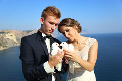Wedding couple with pigeons Stock Photos