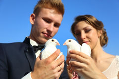 Wedding couple with pigeons Royalty Free Stock Image