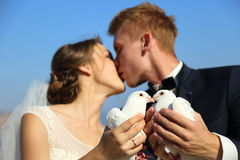 Wedding couple with pigeons Royalty Free Stock Photography