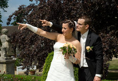 Wedding couple point with arms Royalty Free Stock Image