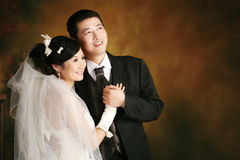 Wedding couple portrait. Wedding portrait of just married young couple Stock Images