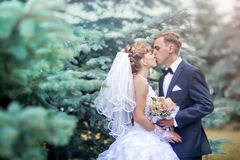 Wedding couple portrait royalty free stock images