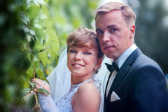 Wedding couple portrait Royalty Free Stock Photography