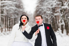 Wedding couple posing with stick hearts, mask Stock Photography