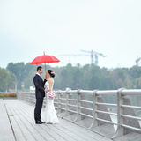 Wedding couple in a rainy day - portrait Royalty Free Stock Photos