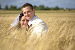 Wedding couple among rye fertility. Wedding begining of new life fertility among rye fields stock image