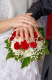Wedding couple showing rings Stock Photography