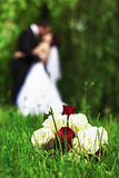 Wedding couple. Silhouette of wedding couple. A bouquet of roses In front Stock Photos