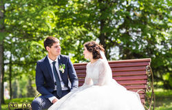 Wedding couple sitting on a bench Stock Photos
