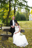 Wedding couple sitting on a wooden bench Royalty Free Stock Photo
