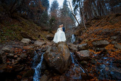 Wedding couple softly hugs on the waterfall. Misty day in mountains Royalty Free Stock Photos